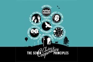 7 Cooperative Principles